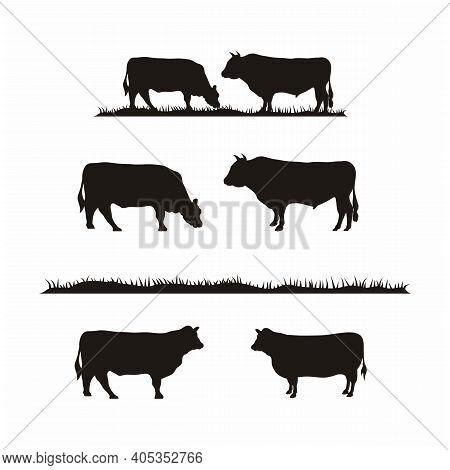 Vintage Cattle Angus Cow & Grass Silhouette Livestock Farm Logo Design Vector Illustration Set