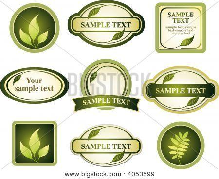 Vector Set Of Design Elements And Frames