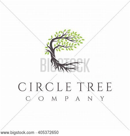 Tree And Roots Logo Design Vector Isolated, Abstract Tree Logo Design