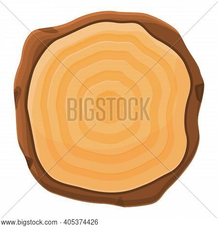 Top View Tree Trunk Icon. Cartoon Of Top View Tree Trunk Vector Icon For Web Design Isolated On Whit