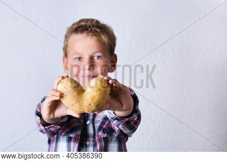 Trendy Ugly Vegetable, Heart Shaped Potato In Hands