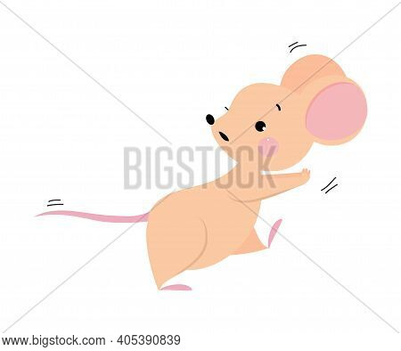 Cute Mouse With Pointed Snout And Rounded Ears Running And Escaping From Someone Vector Illustration