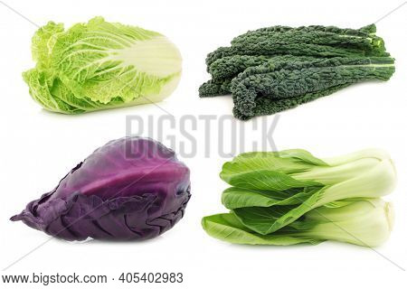 Palm Cabbage,red and green pointed cabbage and chinese cabbage on a white background