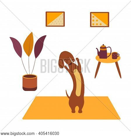 Dachshund Practicing Yoga Side Bending On Yoga Mat. Yoga Dog, Relaxation And Sports. Table With Kett