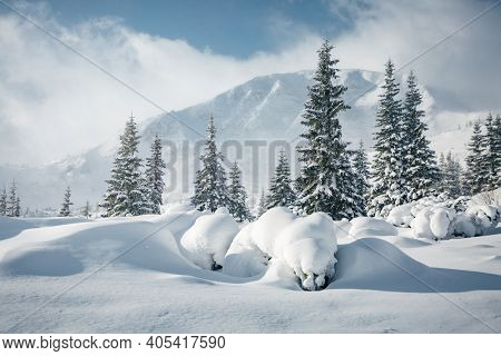 Fresh view of snow-capped mountains on a frosty day. Location place of Carpathian mountains, Ukraine, Europe. Photo wallpapers. Christmas holiday concept. Happy New Year! Discover the beauty of earth.