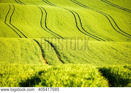 Picturesque wavy fields in agricultural area on a sunny day. Location place South Moravia region, Czech Republic, Europe. Artistic wallpaper. Abstract natural pattern. Discover the beauty of earth.