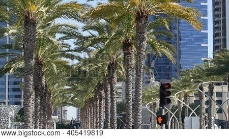 Metropolis Urban Skyline, Downtown Of San Diego City, California, Usa. Highrise Skyscrapers Facade I