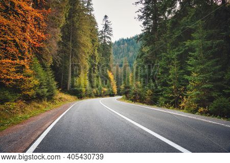 Road In Forest At Sunset In Autumn. Beautiful Mountain Roadway, Trees With Green And Orange Foliage.
