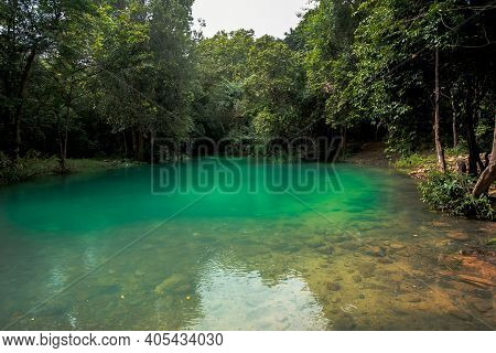 Summer Forest Landscape - Green Deciduous Forest Oak Tree On The Bank Of The Small Forest River In S