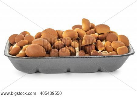 Fresh Shimeji (brown Beech) Mushrooms In A Plastic Packaging Isolated On White Background. Side View