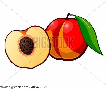 Drawn Ripe Peach Fruit. Ripe Red Peach Isolated On White Background. Drawn Fruit With Leaf. Whole An