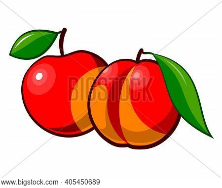 Drawn Ripe Peach And Apple. Ripe Red Peach And Apple Isolated On White Background. Drawn Fruits With