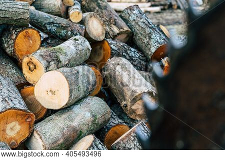 Pile Of Cut Alder Logs With Out Of Focus Circular Saw In Foreground - Concept Of Hard Work