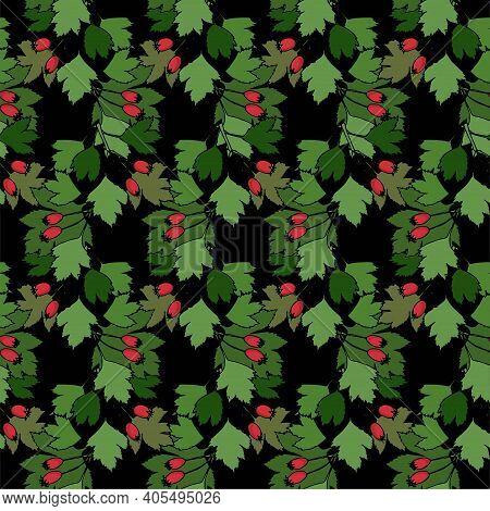 Hawthorn Seamless Pattern On Black. Red Fruits, Green Leaves Art Design Stock Vector Illustration Fo