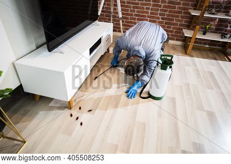 Pest Control Exterminator Services Spraying Cockroach Insecticide