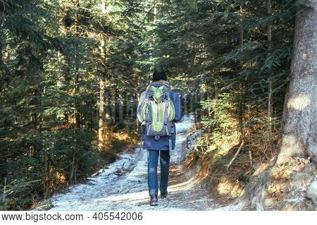 Lonely Man Goes Away On Road Among Trees. Senior Man Trail Hiking In The Forest At Sunset. Sun Going