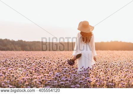 A Beautiful Girl In A Lavender Field. A Beautiful Woman In The Style Of Provence In A White Dress Wi