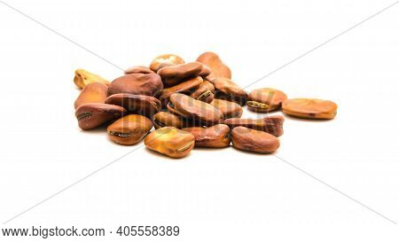 Group Of Fava Beans Or Broad Beans Planting Seeds Isolated On White Background