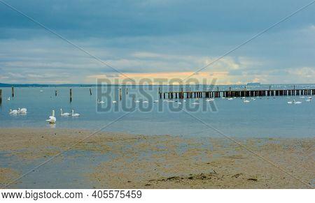 Winter On A Popular Beach Near Grado, Friuli-venezia Giulia, North East Italy. It Is Currently Home