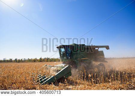 Harvesting Corn Field In Autumn.harvest Working On Corn Field.
