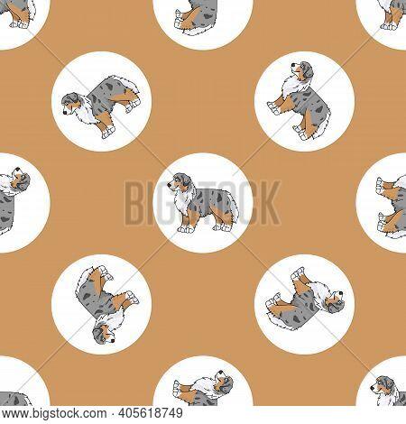Hand Drawn Cute Australian Shepherd Dog Breed In Polka Dot Seamless Vector Pattern. Purebred Pedigre
