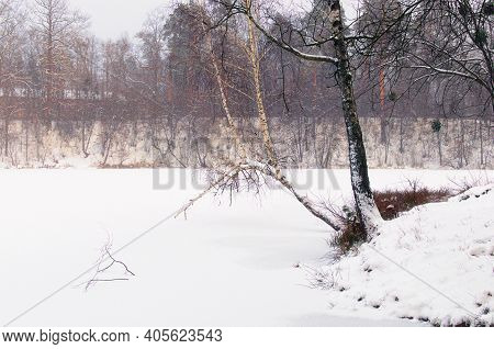 Scenic Winter Season In The Pushcha-vodytsia. Picturesque Landscape Of Frozen Lake And Shore With Un