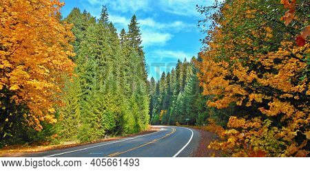 Fantastic Fall Drive - An October View Along State Hwy 126 In The Mckenzie River Corridor - Near Bel