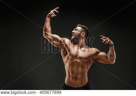 Very Brawny Guy Bodybuilder Posing. Beautiful Sporty Guy Male Power. Fitness Muscled Man.