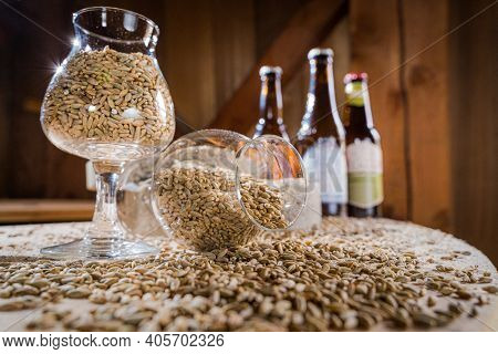 Glasses Filled With Different Malts And Hops. Brewing Concept. Make A Lager Beer With Natural Ingred