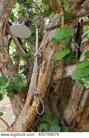 Outdoor Stainless Steel Shower In Tropical Tree. Modern Outdoor Shower Area. Tropical Outdoors Showe