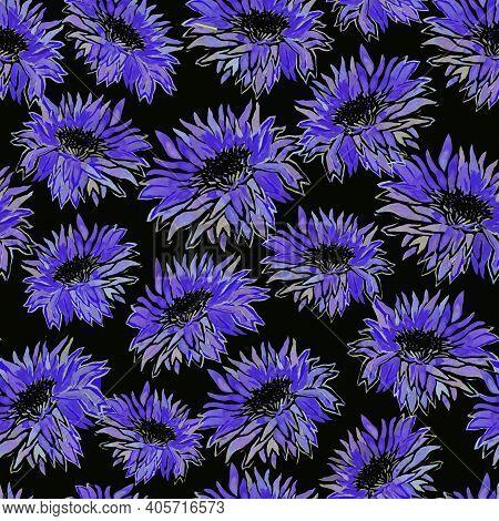 Seamless Floral Pattern Of Full Bloom Watercolor Dark Blue Chrysanthemum Flowers In Freehand Style I