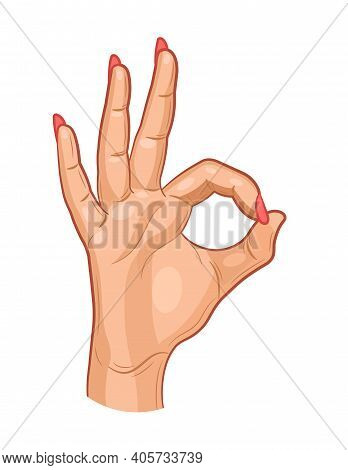 Hand Ok Sign Isolated On White Background. Hand With Ok Woman Gesture. Vector Illustration.