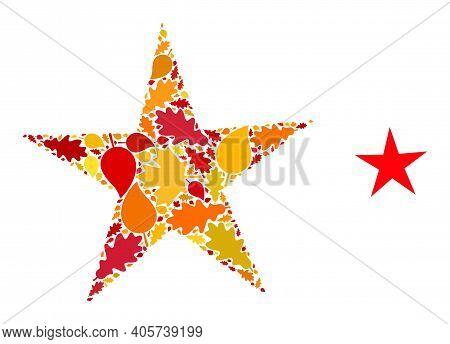 Star Mosaic Icon Created For Fall Season. Vector Star Mosaic Is Created Of Randomized Autumn Maple A