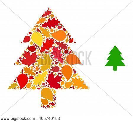 Fir Tree Mosaic Icon Created For Fall Season. Vector Fir Tree Mosaic Is Formed With Random Autumn Ma