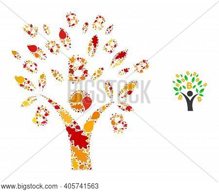 Bitcoin Tree Man Mosaic Icon Constructed For Fall Season. Vector Bitcoin Tree Man Mosaic Is Designed