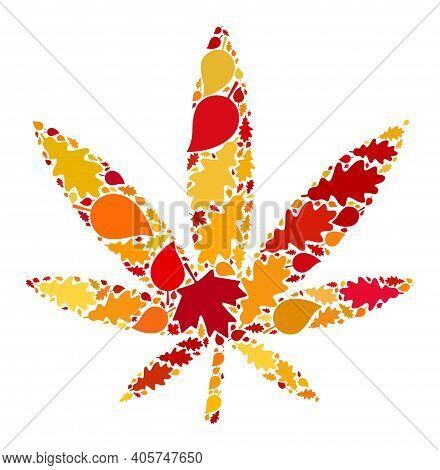 Marijuana Mosaic Icon Created For Fall Season. Raster Marijuana Mosaic Is Formed From Randomized Fal