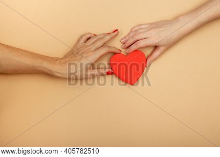 Lgbt Concept. Womens Hands Holding Red Heart