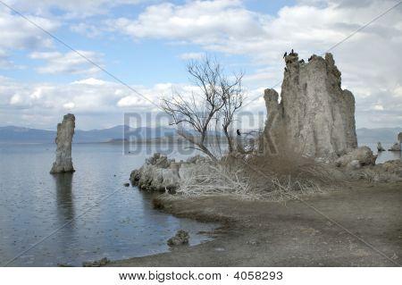 Tufa formations on Mono Lake Eastern Sierras