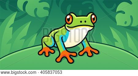 Red-eyed Tree Frog, Cute Cartoon Illustration Of Central American Rainforest Frog In The Wild.