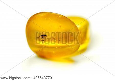 Amber Stones With Mosquito, Isolated White Background. Bright Yellow Stone From Baltic Sea. Natural