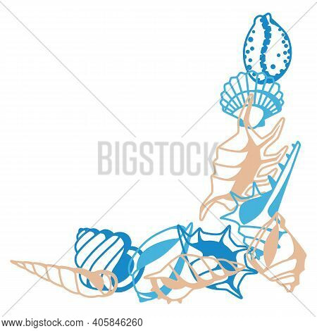 Corner With Seashells. Tropical Underwater Mollusk Shells Decorative Illustration.