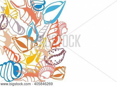 Background With Seashells. Tropical Underwater Mollusk Shells Decorative Illustration.