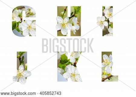 Floral Letters. The Letters G Y I J K L Are Made From Flower Photos. A Collection Of Wonderful Flora
