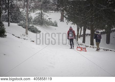 Two Little Boys Are Having Fun On A Sleigh During A Snowfall. Children Sled In The Snow. Brothers Ri