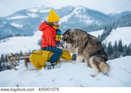 Husky Dog With Kid Boy On The Snowy Winter Landscape. Winter For Kid. Theme Christmas Holidays New Y