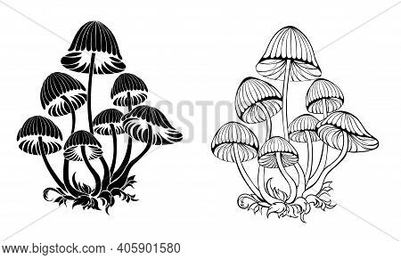 Two Groups Of Artistically Drawn, Contoured, Black, Isolated, Silhouette Toadstools On A White Backg