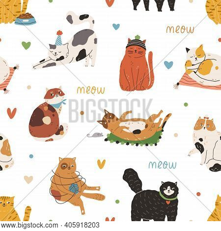 Seamless Pattern With Meow Inscription And Cute Funny Cats Playing And Sleeping On White Background.