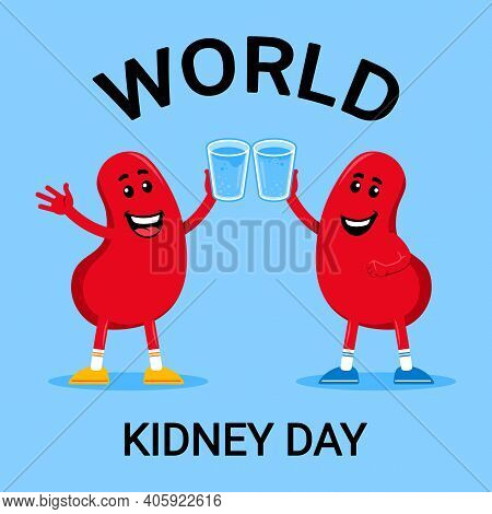 Keep Healthy Kidney With Drink Enough Water. Keep Hydrate. Vector Illustration That Suitable For Wor