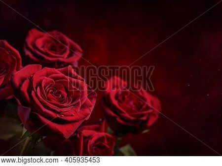 Dark Red Roses Background. Luminous Hearth Shaped Bokeh In The Background. Valentine Day Or Wedding