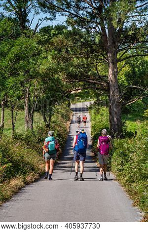 Group Of Friends Walking With Backpacks Trail Pilgrimage Way Of St James. Adventure, Travel, Tourism